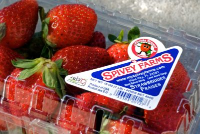 Jammer on Florida strawberry farm Spivey Farms clamshell container.