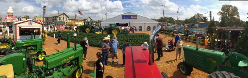 FSGA Booth at the 2014 Florida Strawberry Festival