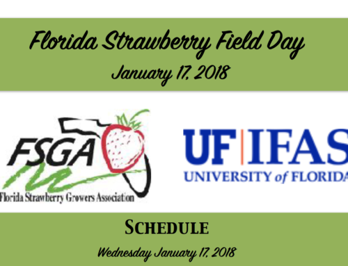 Florida Strawberry Field Day 2018