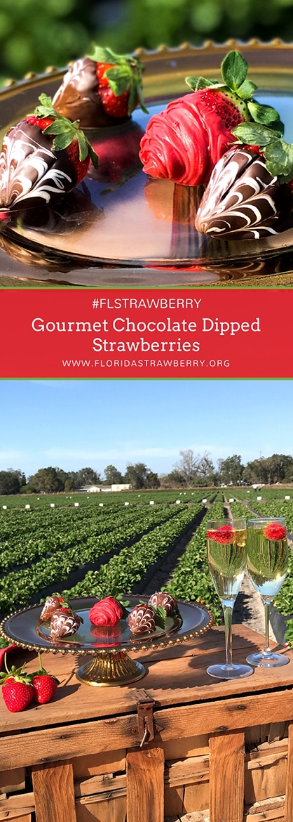 Gourmet Chocolate Dipped Strawberries