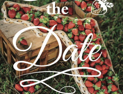 37th Annual Strawberry Jam